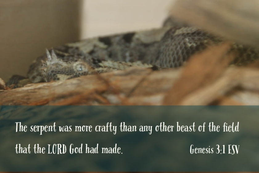 Genesis 3_1 Serpent Crafty