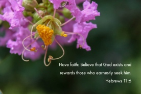 Hebrews 11_6 Faith God Exists Rewards