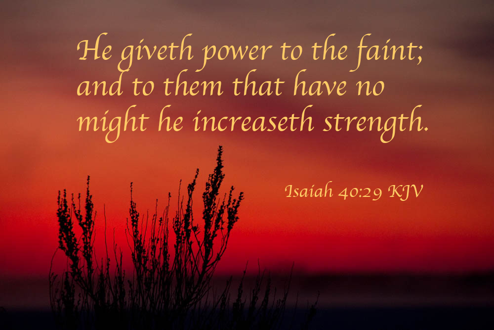 Isaiah 40:28-31 in SeveralTranslations
