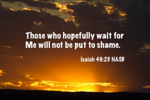 Isaiah 49_23 IMG_8211 Those Who Wait Not Put To Shame