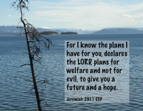 Jeremiah 29_11 PA150006-4 Plans Welfare Future Hope