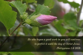 Philippians 1_6 Began Good Work Perfect