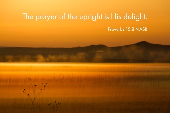 Proverbs 15_8 NASB Prayer Upright His Delight