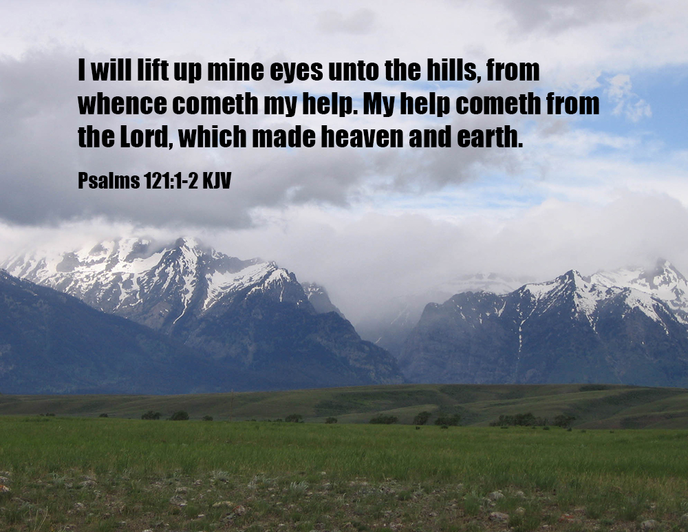 Read Five Psalms aDay