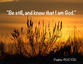 Psalms 46_10 T3i_05 IMG_8752 Be Still And Know That I Am God