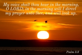 Psalms 5_3 Voice Hear Morning Prayer Look Up
