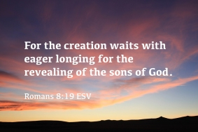 Romans 8_19 IMG_7509 Creation Waits Revealing Sons of God
