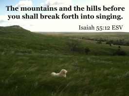 Isaiah 55_12 IMG_9203 Mountains Hills Break Forth Singing