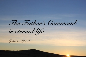 John 12_49-50 IMG_9419 Fathers Cmd Eternal Life