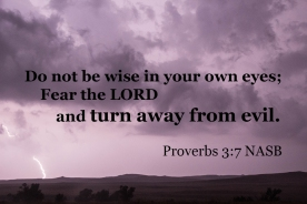 Proverbs 3_7 IMG_1041 Not Wise Own Eyes Fear LORD Turn Evil