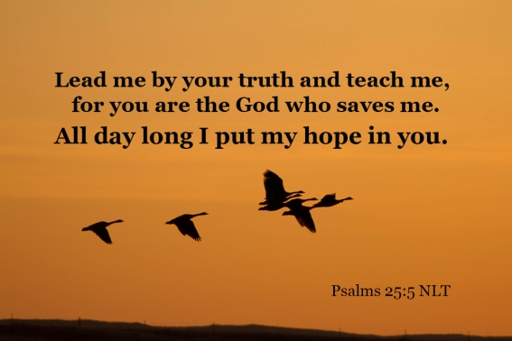Psalms 25_5 7D_05 IMG_0885 Lead Me Truth Teach God Who Saves Me