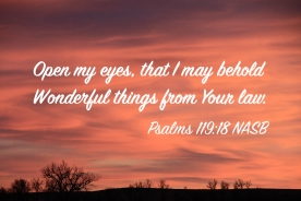 Psalms 119-18 IMG_3173 Open My Eyes Behold Wonderful Things Law