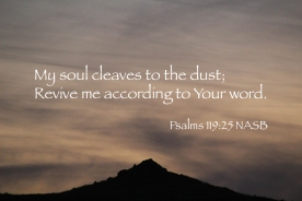 Psalms 119-25 IMG_2833 Soul Dust Revive Me Your Word
