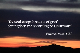 Psalms 119-28 IMG_8035 Soul Weeps Grief Strengthen Me Your Word