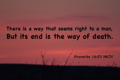 Proverbs 16-25 IMG_4752-2 Way Seems Right End Is Death