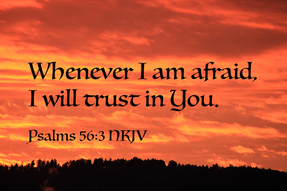 Quoted Photos – Psalms56-90