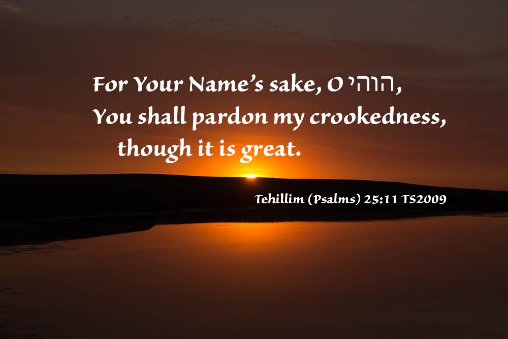 Psalms 25:11 TS2009 –Wow!