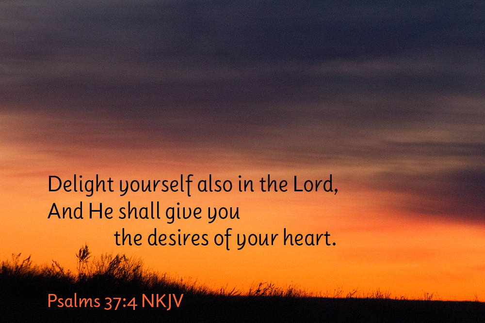 The Lord Will Give You...