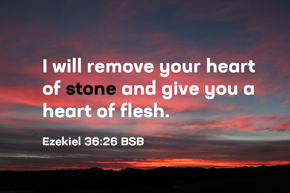 The Heart of the Believer