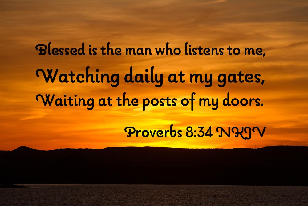 Proverbs Reading Plan