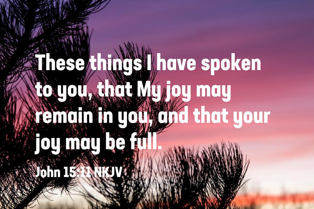 Obedience Brings Joy