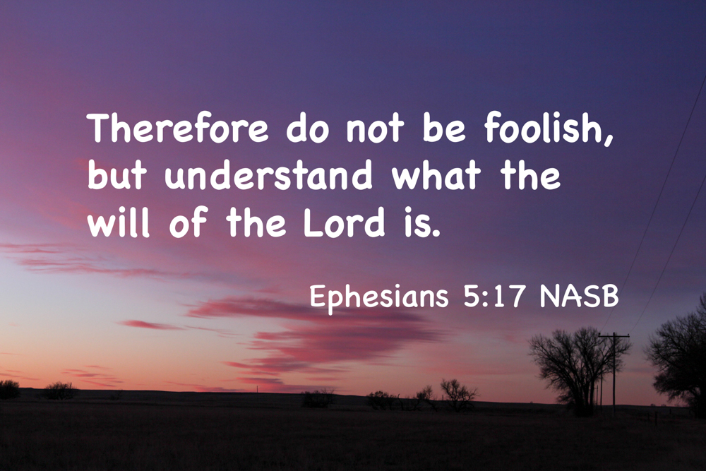 The Book of the Walk –Ephesians
